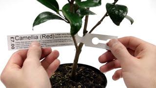 etiqueta-plantas